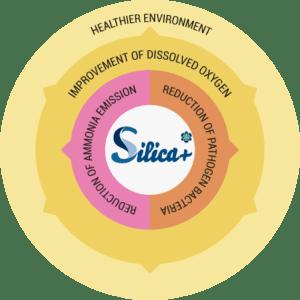 a-healthier-environment-circular