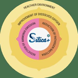 a-healthier-environment-circular2x